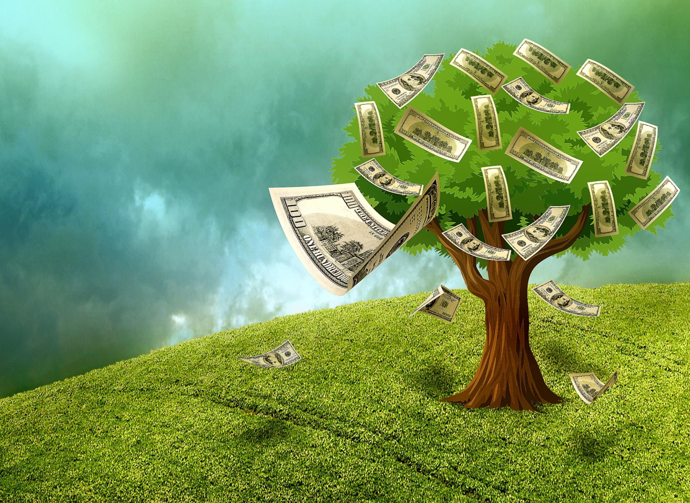 Energie Des Geldes Nach Feng Shui
